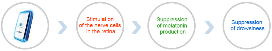 Stimulation of the nerve cells in the retina → Suppression of melatonin production → Suppression of drowsiness